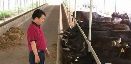 中国六个养殖奇人的创业故事
