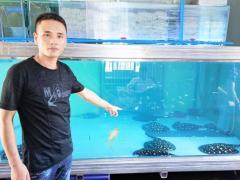 陶山人创办�鱼养殖场 每条幼鱼价值万元