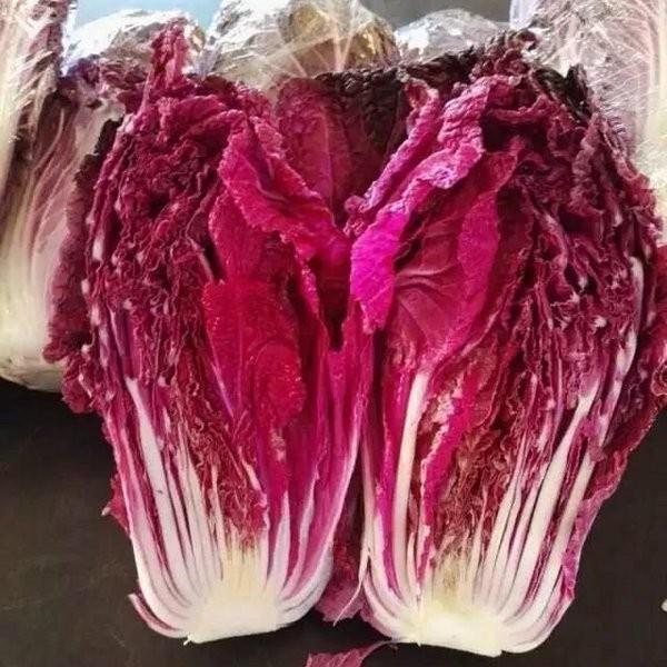 白菜变紫后,每公斤竟能卖到10块左右!