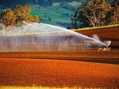 为什么国内老板都喜欢去日本考察农业?