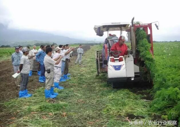 日本农业的9大经营之道,值得中国农业学习30年!