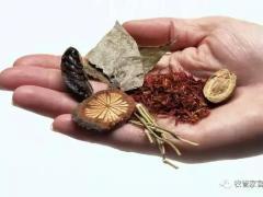 致富有道:中药材的种植与管理