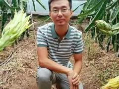 王勤鹏:北方居然也能种出高品质的火龙果?