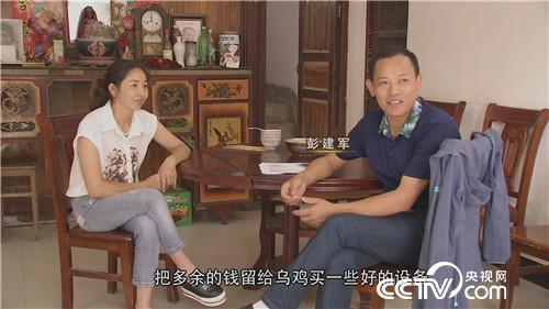 致富经:乌鸡汉 <a href=https://www.zhifujing.org/special/xiangzhu/ target=_blank class=infotextkey>香猪</a>妹 千万财富一个招(20170915)