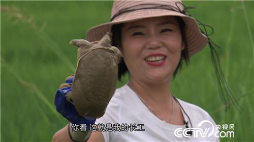 致富经:爱美懒媳妇 懒招赚快钱(20170913)