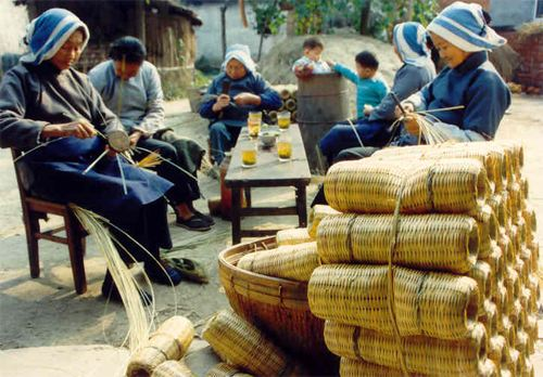 回农村有哪些挣钱的机会?15个农村创业项目