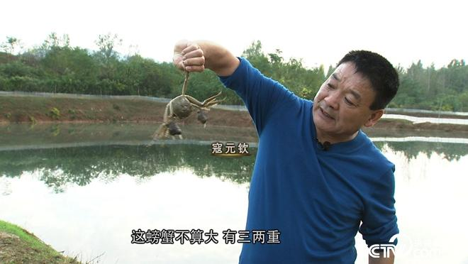 &ldquo;魔咒&rdquo;泉里有<a href=https://www.zhifujing.org/special/pangxie/ target=_blank class=infotextkey>螃蟹</a> 3个月要捞2000万
