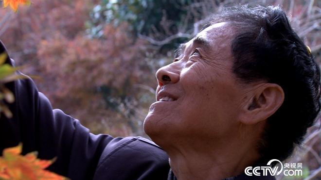 76岁患癌老人误打误撞收获6亿财富