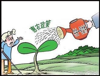 有钱也不要做农业,十个农业项目九个死掉了!