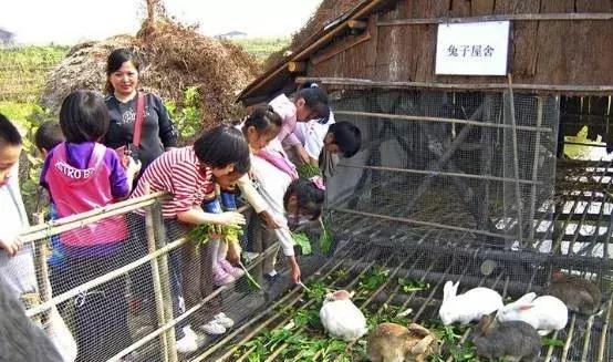 休闲农庄亲子活动 边做农庄边带娃,一位辣妈的亲子休闲农庄