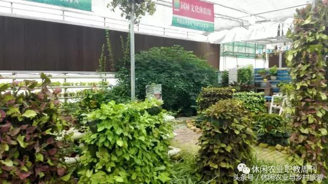花卉苗木生产基地如何升级做休闲农业?