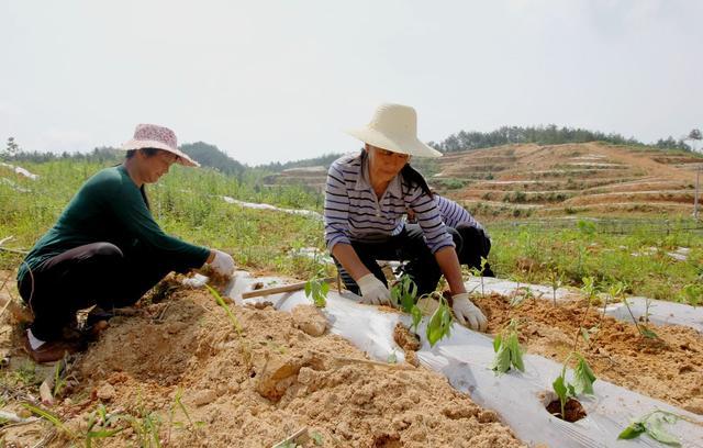 """过年之后,农村将面临""""三大难题"""",8成农民都会头疼"""