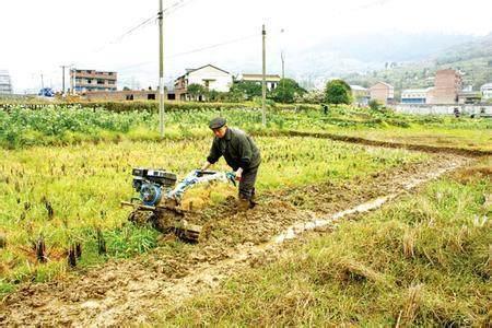 农村骗局不断升级,这些套路农民们要早点识破!