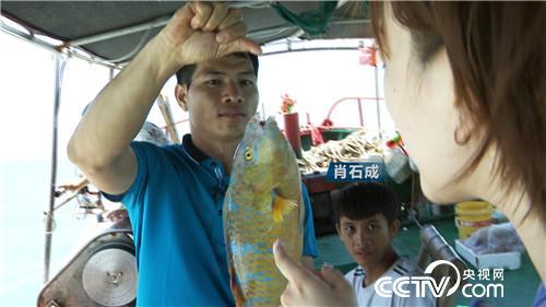 [致富经]渔夫遇到俏姑娘 深海淘金年卖700万 20180822