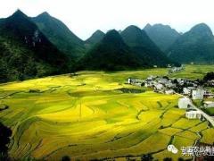 惊讶!10年后的农村将是这样的种植模式!传统农业会被淘汰
