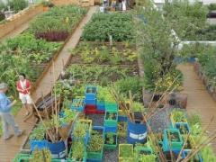 国外休闲农业发展现状