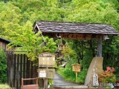 日本人又把休闲农业玩出了新花样,50万人排队,年收入50亿!