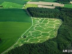 只有云南大的德国,农业爆发力却这么强