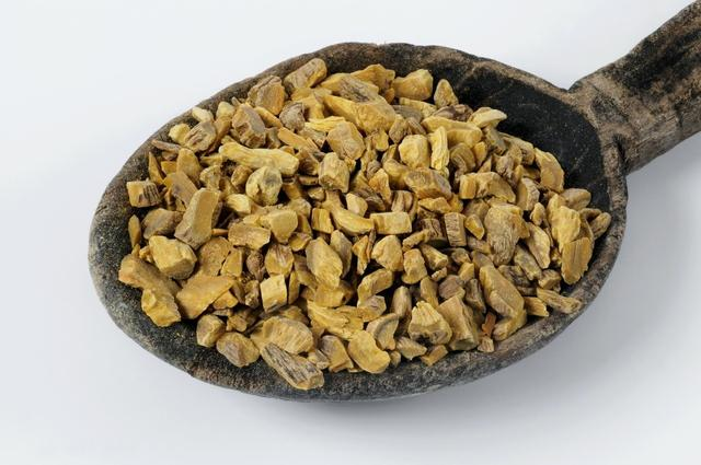黄芩种子的特点
