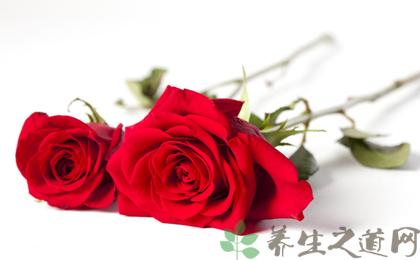 玫瑰花的中药用途