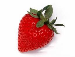 生态草莓自己摘 亩赚2万乐开怀