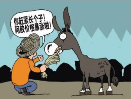 驴皮15年间上涨百倍,东阿阿胶10年间提价16次