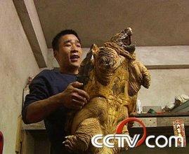 养殖乌龟:巴掌地里的财富秘密(4月21日21:17)