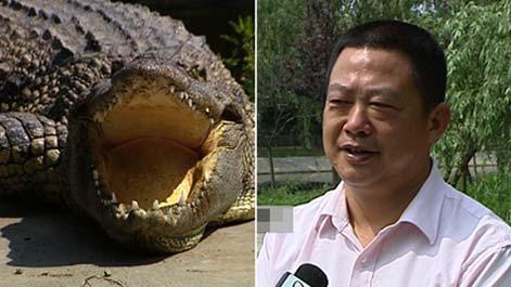 陈冬春鳄鱼谷 鳄鱼凶猛好赚钱(2011.07.06)