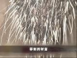 郑益豪猪养殖:带刺的财富(2011.07.14)