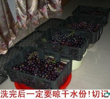 葡萄酒制作步骤2:洗完的葡萄要晾干