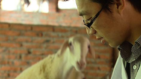 陈争上养羊:带着女友走进羊圈之后(2012.02.20)