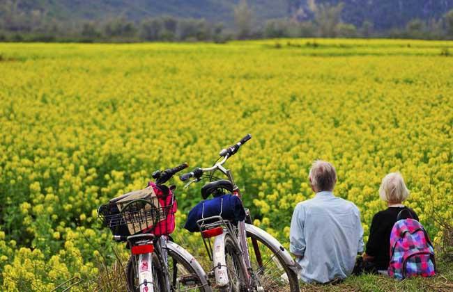 休闲农业的规划原则