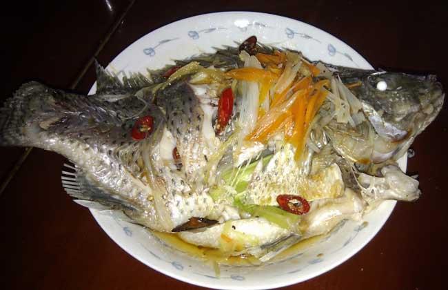 罗非鱼的做法大全