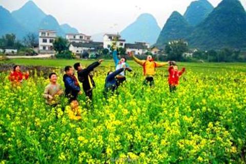 2017年农村前景广阔的行业有哪些?