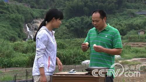[致富经]卖鸡蛋有高招 让老婆住进大别墅(20141027)