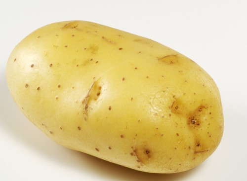 """土豆翻身作""""主粮""""拯救人类,马铃薯靠你了"""