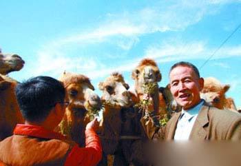 搞旅游的乡亲们来养殖场租用骆驼,这是一个双赢的好项目。