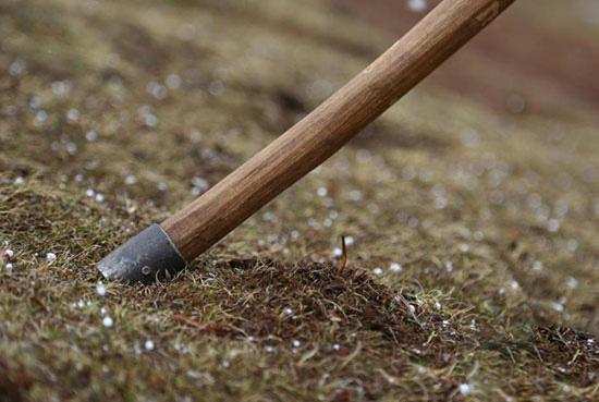 牧民采挖冬虫夏草时,先用镢头限定出最小采挖范围,以防止采挖对草原产生破坏。