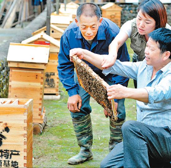 5月22日,江西省横峰县电商创客正在帮助贫困户挂蜂箱。