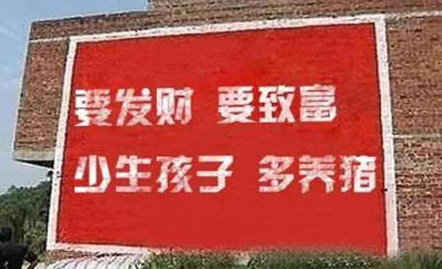 被禁止养猪了,农民还能做什么